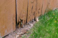 How Long Will a Fence Last in Colorado?